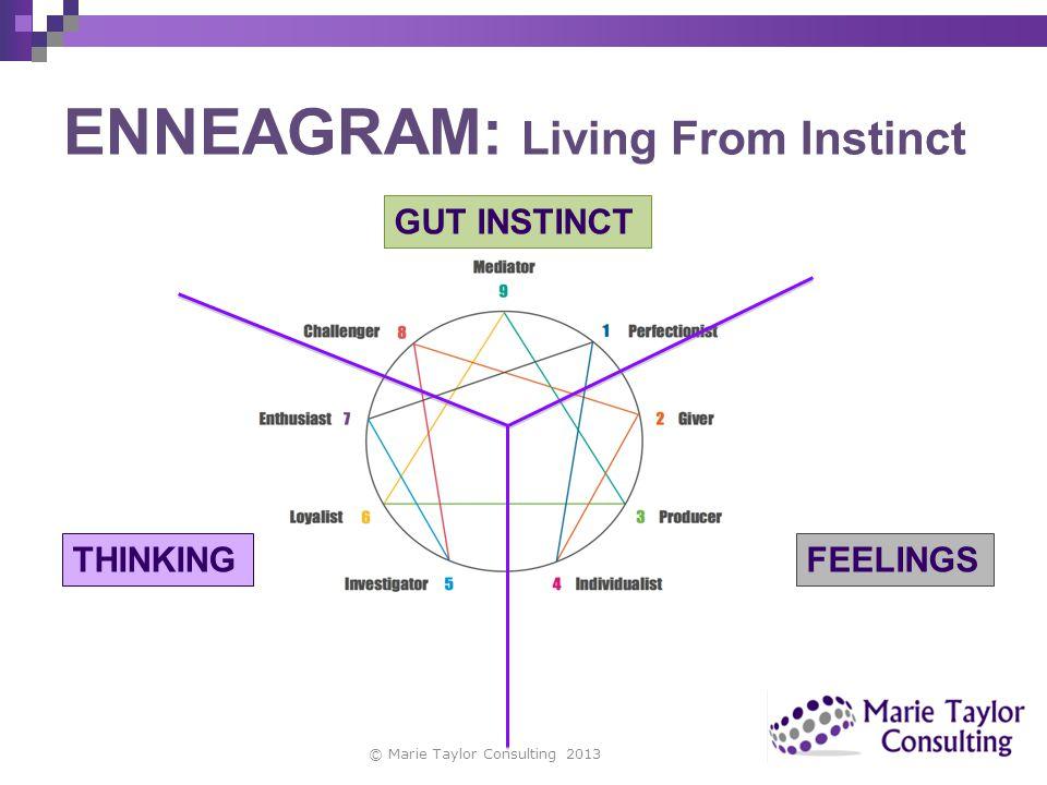 ENNEAGRAM: Living From Instinct © Marie Taylor Consulting 2013 GUT INSTINCT FEELINGSTHINKING