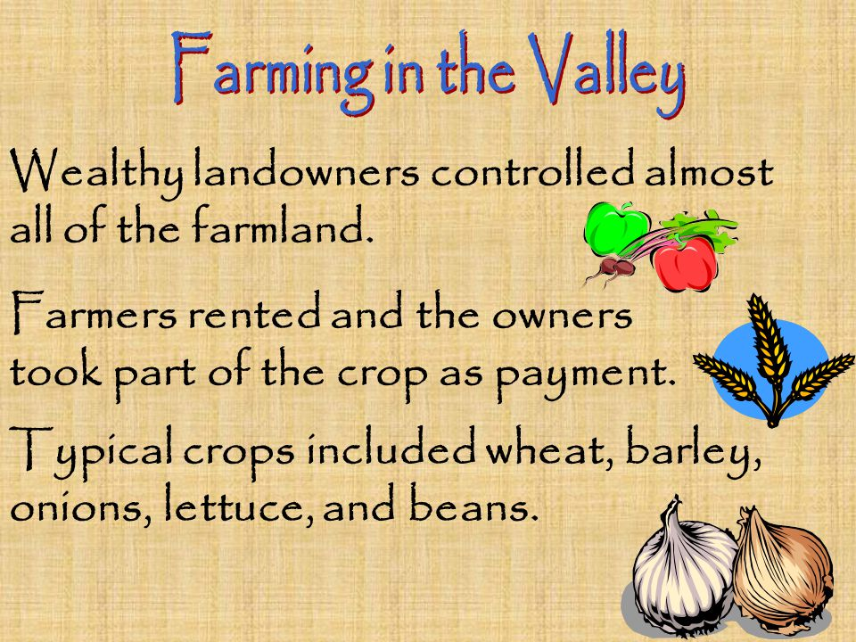 Wealthy landowners controlled almost all of the farmland. Farmers rented and the owners took part of the crop as payment. Typical crops included wheat