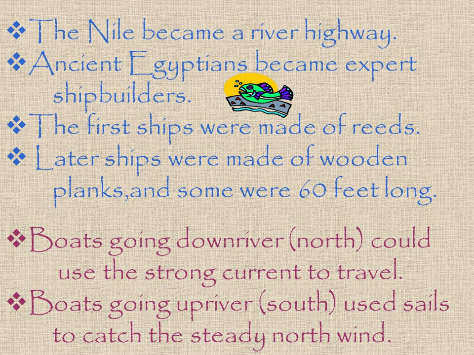  The Nile became a river highway.  Ancient Egyptians became expert shipbuilders.  The first ships were made of reeds.  Later ships were made of wo