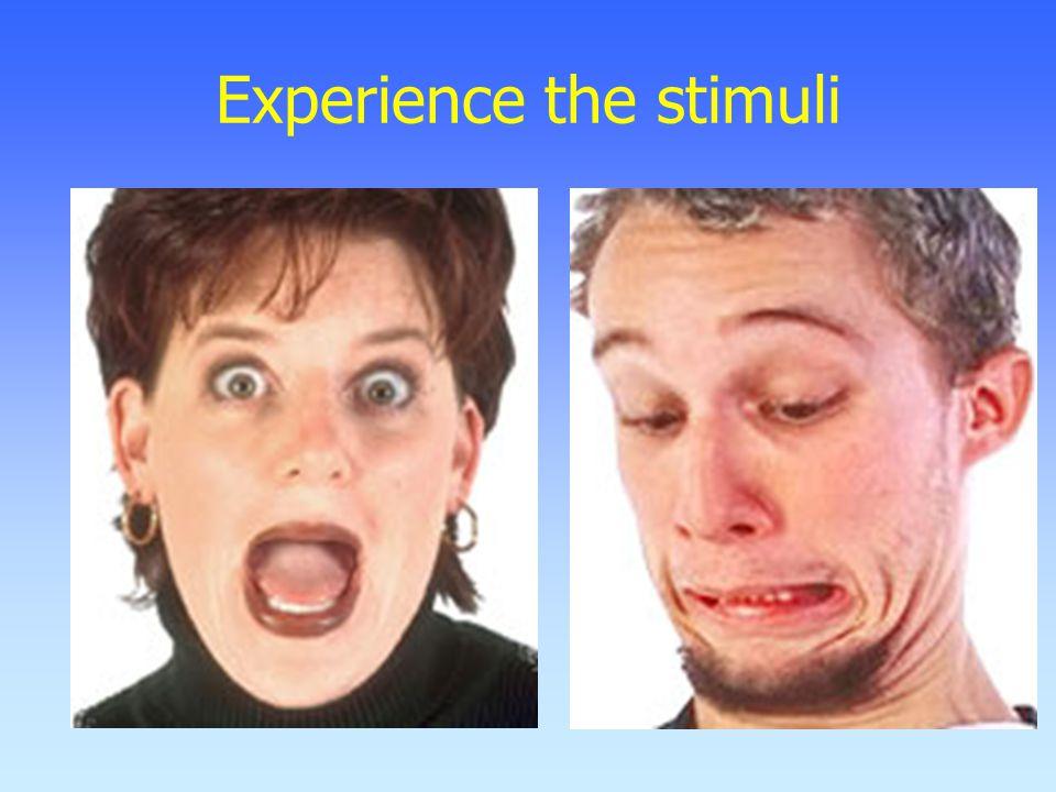 Experience the stimuli
