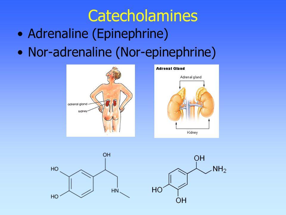Catecholamines Adrenaline (Epinephrine) Nor-adrenaline (Nor-epinephrine)