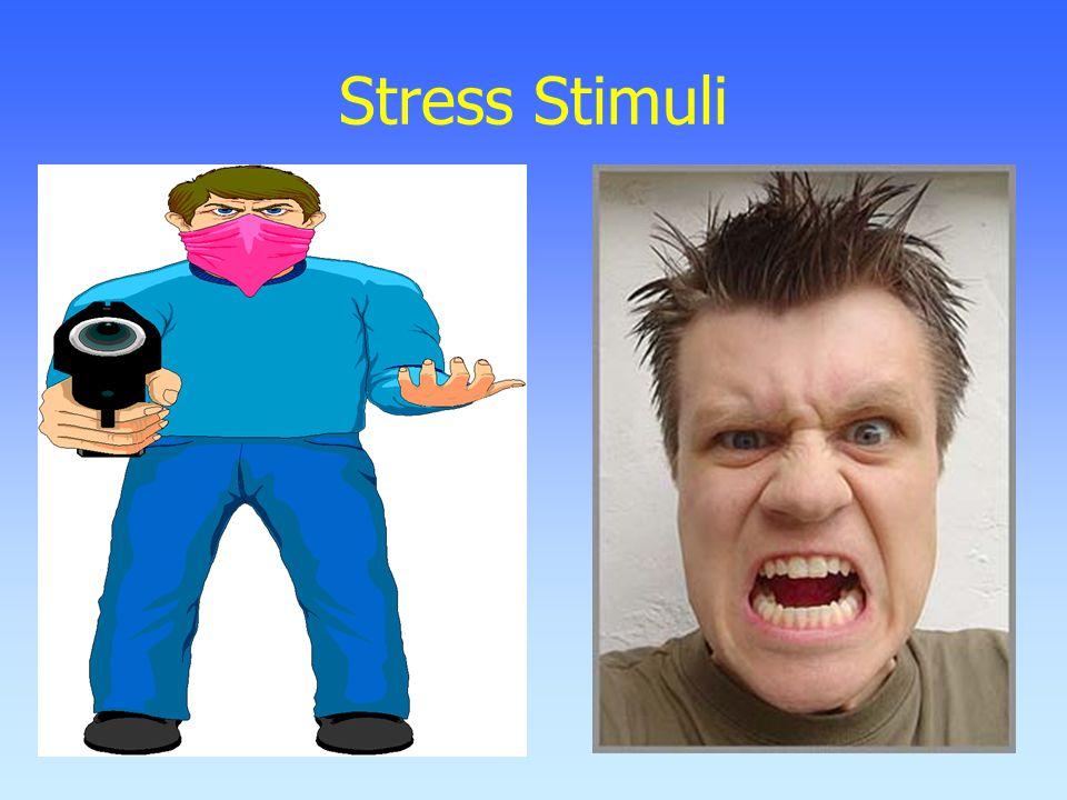 Stress Stimuli
