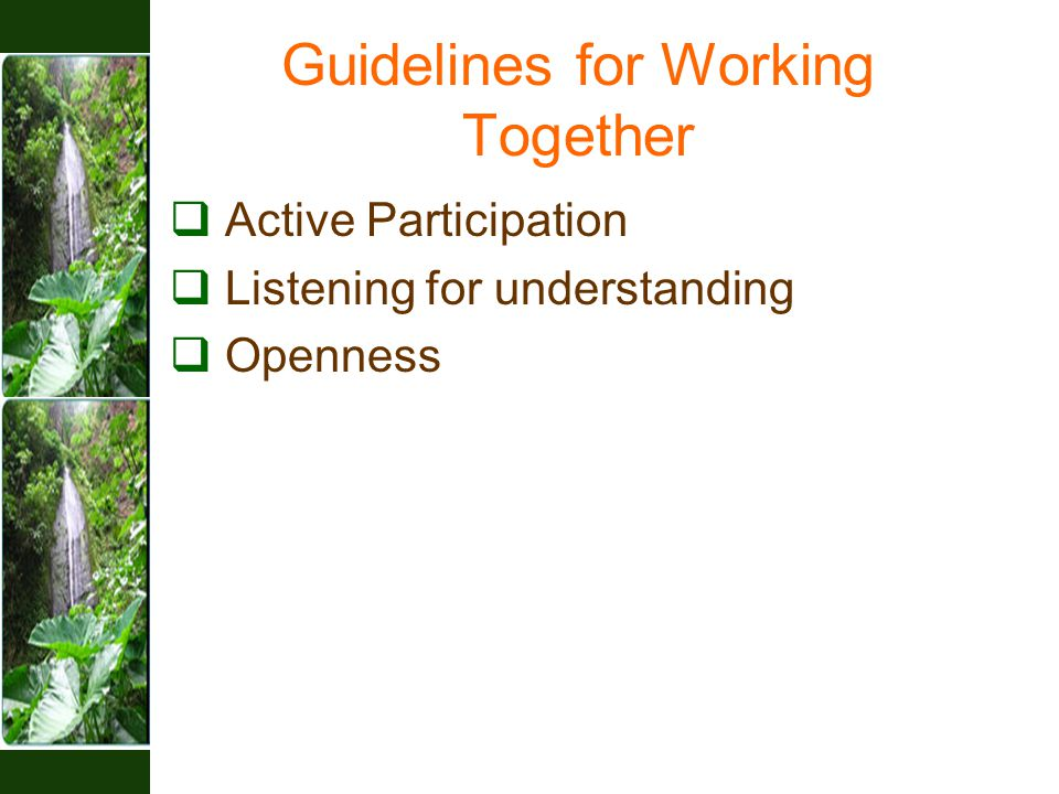 Guidelines for Working Together  Active Participation  Listening for understanding  Openness