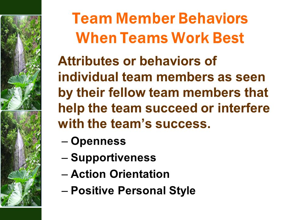 Team Member Behaviors When Teams Work Best Attributes or behaviors of individual team members as seen by their fellow team members that help the team