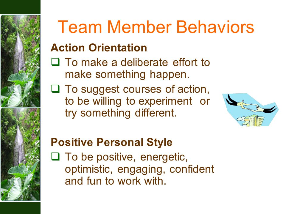 Team Member Behaviors Action Orientation  To make a deliberate effort to make something happen.  To suggest courses of action, to be willing to expe