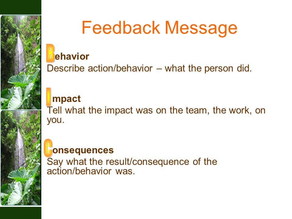 Feedback Message ehavior Describe action/behavior – what the person did.