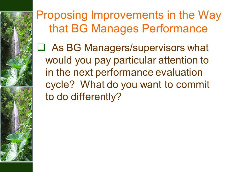  As BG Managers/supervisors what would you pay particular attention to in the next performance evaluation cycle.