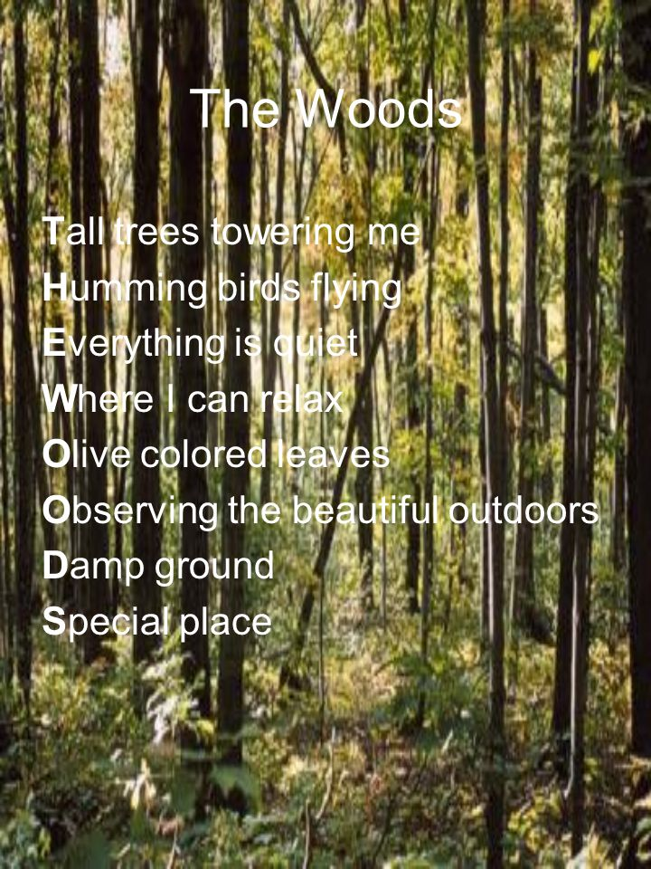 The Woods Tall trees towering me Humming birds flying Everything is quiet Where I can relax Olive colored leaves Observing the beautiful outdoors Damp ground Special place