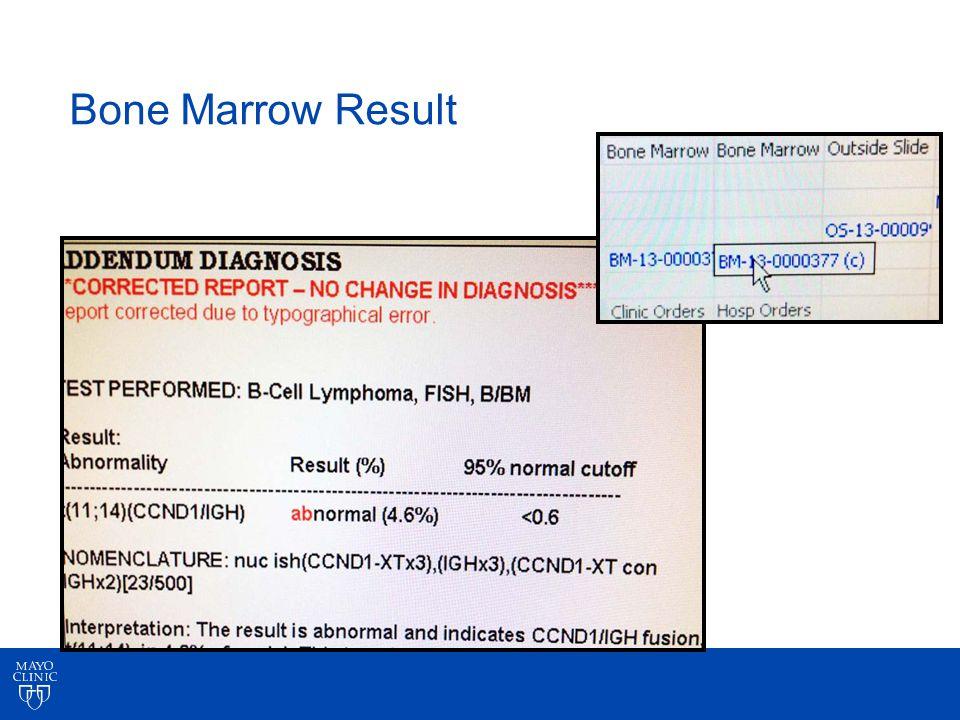 Bone Marrow Result