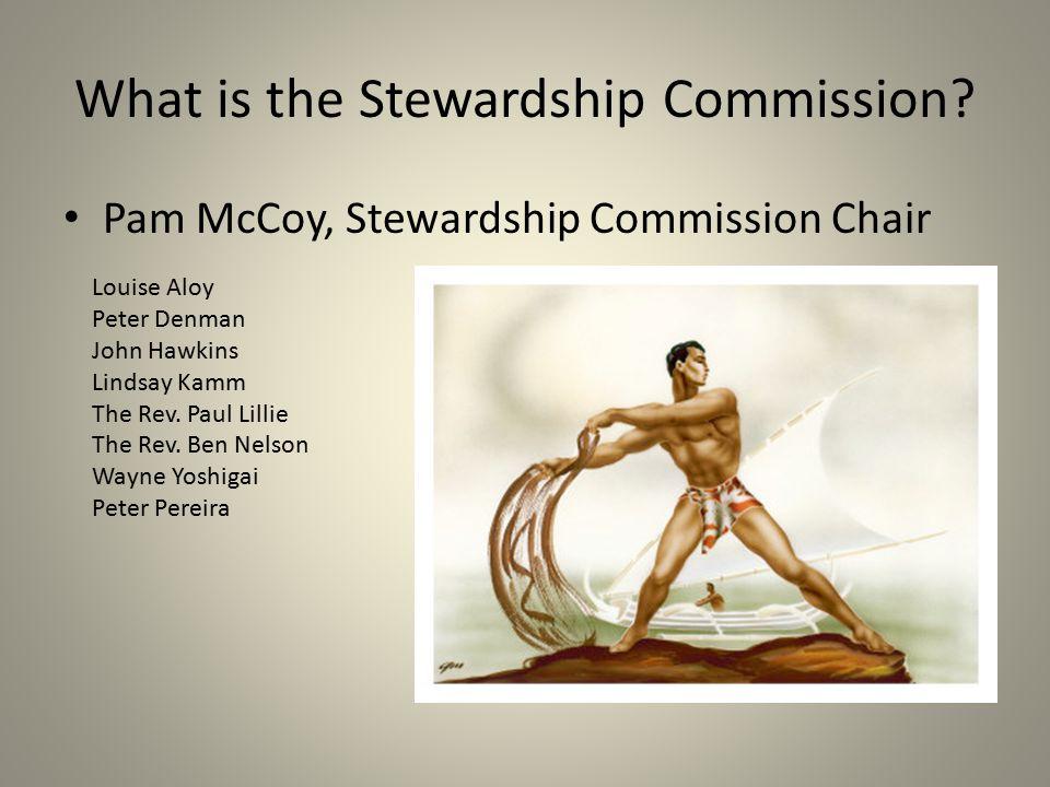 What is the Stewardship Commission? Pam McCoy, Stewardship Commission Chair Louise Aloy Peter Denman John Hawkins Lindsay Kamm The Rev. Paul Lillie Th