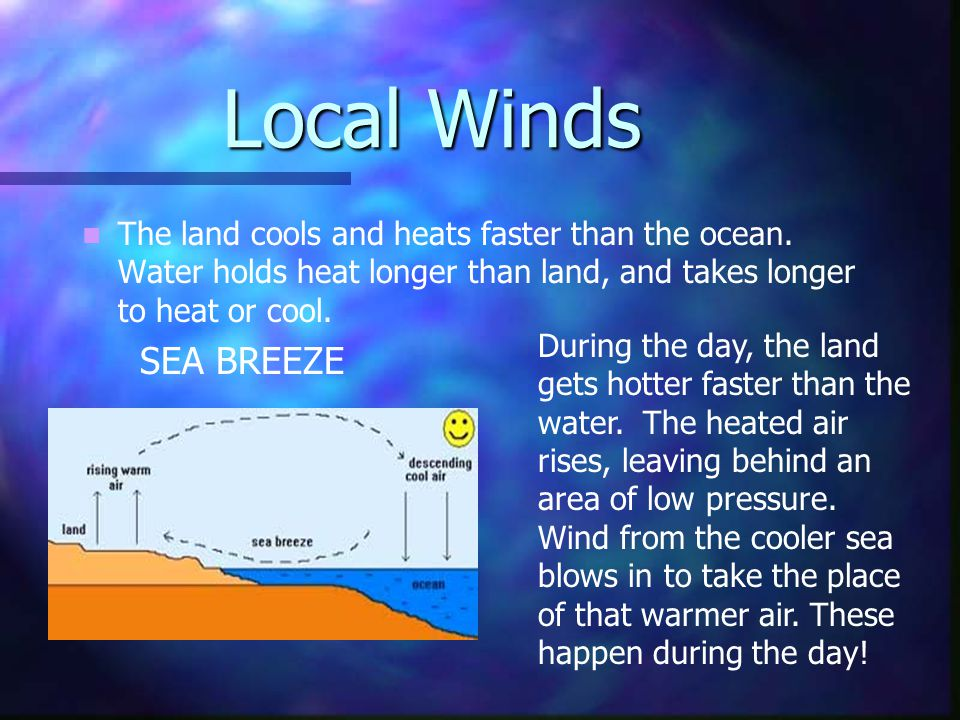 Local Winds The land cools and heats faster than the ocean.