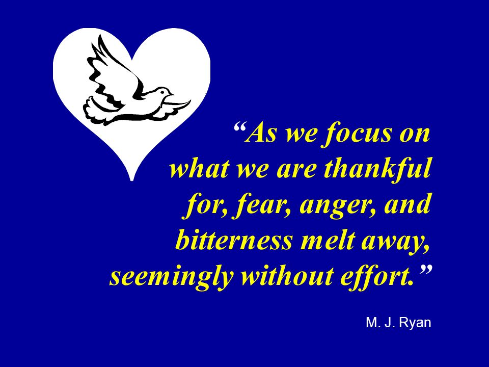 """""""As we focus on what we are thankful for, fear, anger, and bitterness melt away, seemingly without effort."""" M. J. Ryan"""