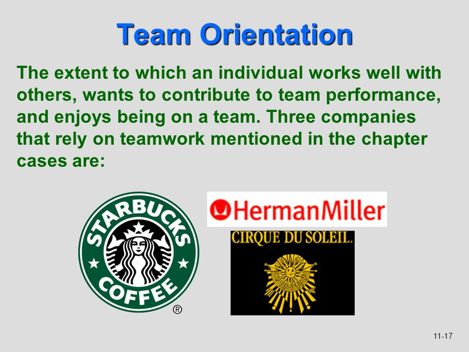 11-17 Team Orientation The extent to which an individual works well with others, wants to contribute to team performance, and enjoys being on a team.