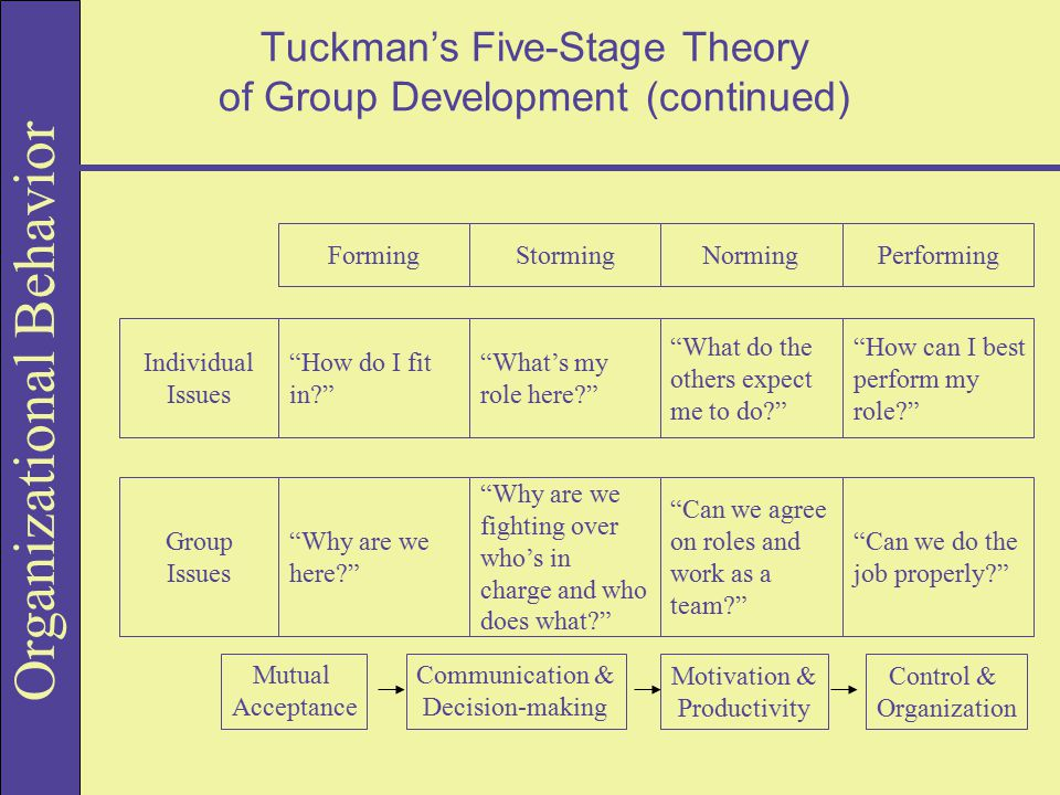 Organizational Behavior Tuckman's Five-Stage Theory of Group Development (continued) Individual Issues FormingStormingNormingPerforming How do I fit in? What's my role here? What do the others expect me to do? How can I best perform my role? Group Issues Why are we here? Why are we fighting over who's in charge and who does what? Can we agree on roles and work as a team? Can we do the job properly? Mutual Acceptance Communication & Decision-making Motivation & Productivity Control & Organization