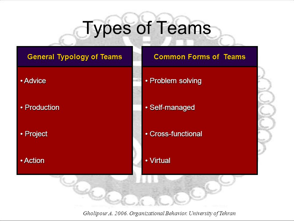 Gholipour A. 2006. Organizational Behavior. University of Tehran Types of Teams General Typology of Teams Advice Advice Production Production Project