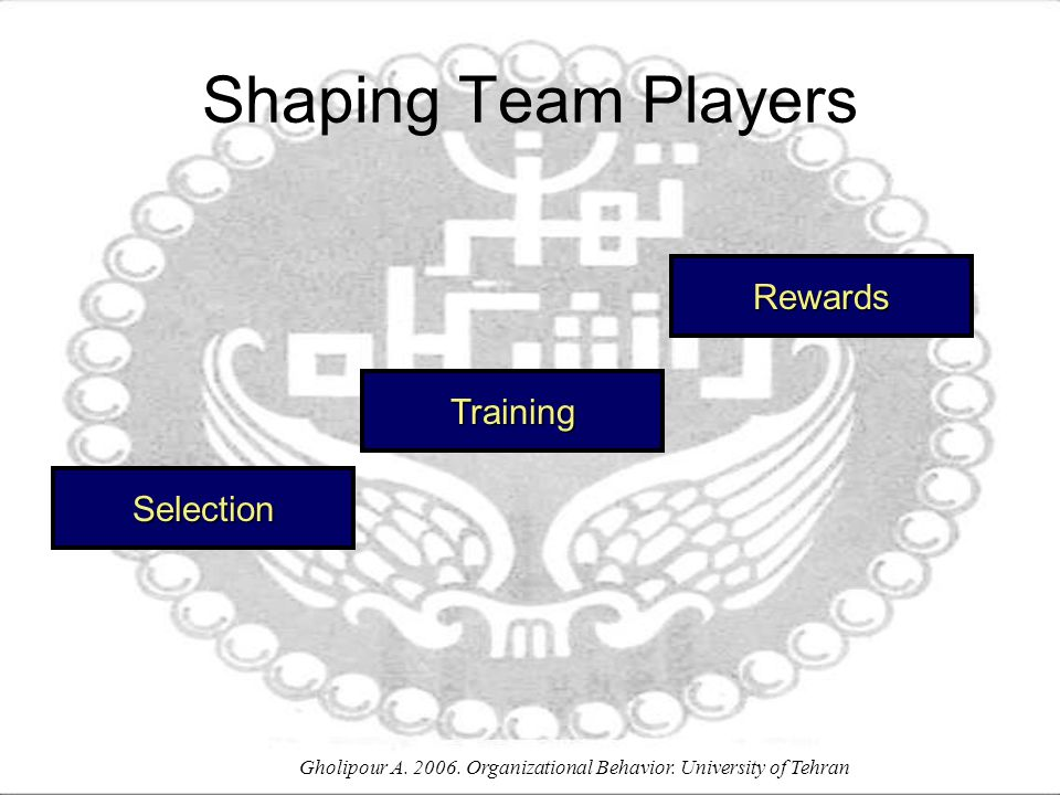 Gholipour A. 2006. Organizational Behavior. University of Tehran Selection Shaping Team Players Training Rewards