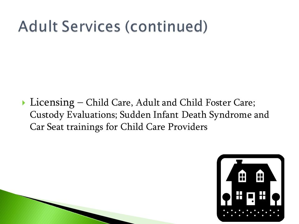  Licensing – Child Care, Adult and Child Foster Care; Custody Evaluations; Sudden Infant Death Syndrome and Car Seat trainings for Child Care Provide