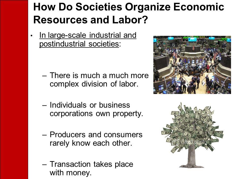 How Do Societies Organize Economic Resources and Labor.