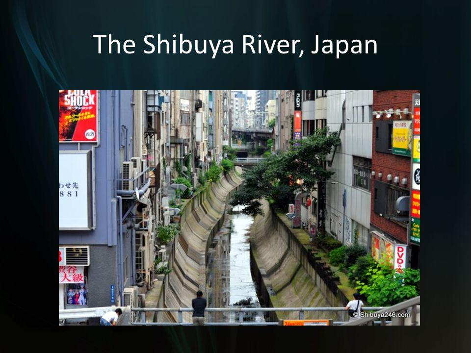 The Shibuya River, Japan
