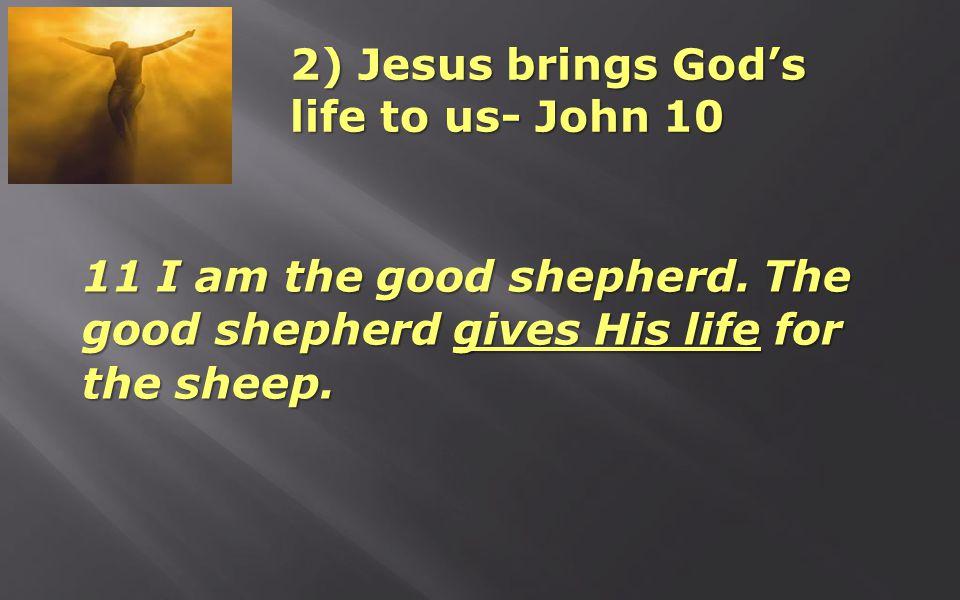2) Jesus brings God's life to us- John 10 11 I am the good shepherd.