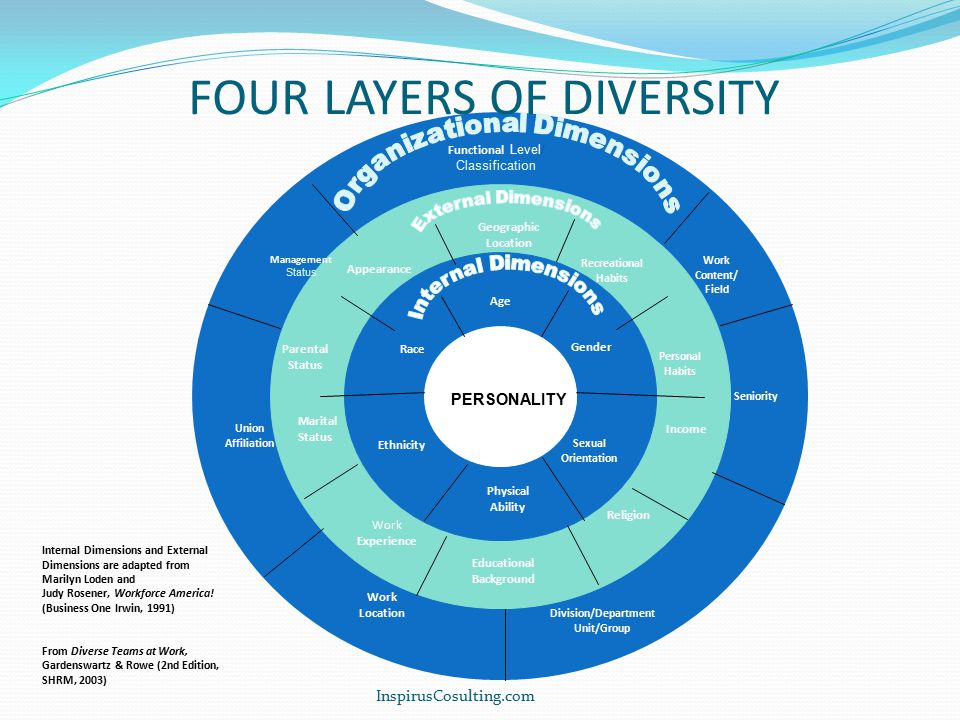FOUR LAYERS OF DIVERSITY Functional Level/ Classification Management Status Union Affiliation PERSONALITY Work Location Division/Department Unit/Group Seniority Work Content/ Field Educational Background Work Experience Appearance Parental Status Marital Status Geographic Location Income Personal Habits Recreational Habits Religion Age Race Gender Ethnicity Sexual Orientation Physical Ability Internal Dimensions and External Dimensions are adapted from Marilyn Loden and Judy Rosener, Workforce America.