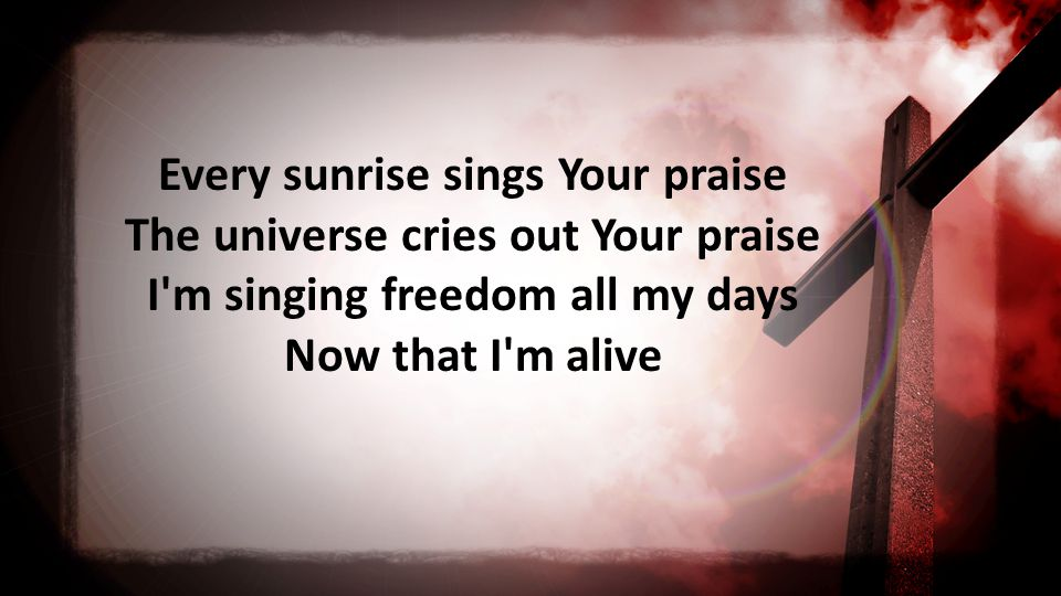 Every sunrise sings Your praise The universe cries out Your praise I m singing freedom all my days Now that I m alive