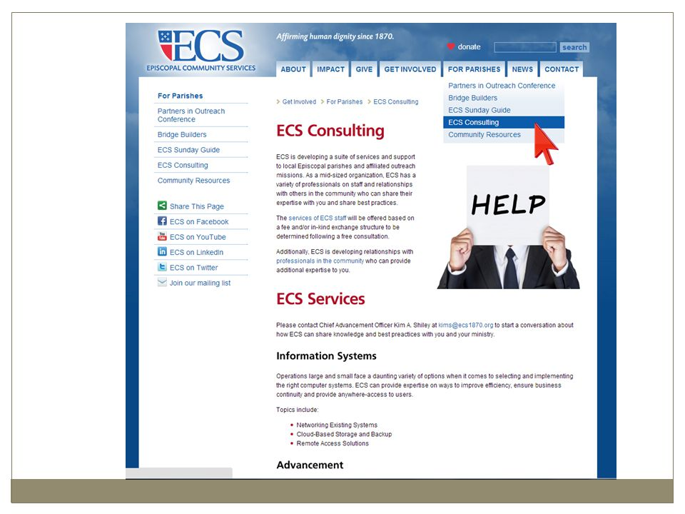 Several Web Shots of ECS Consulting Services Page