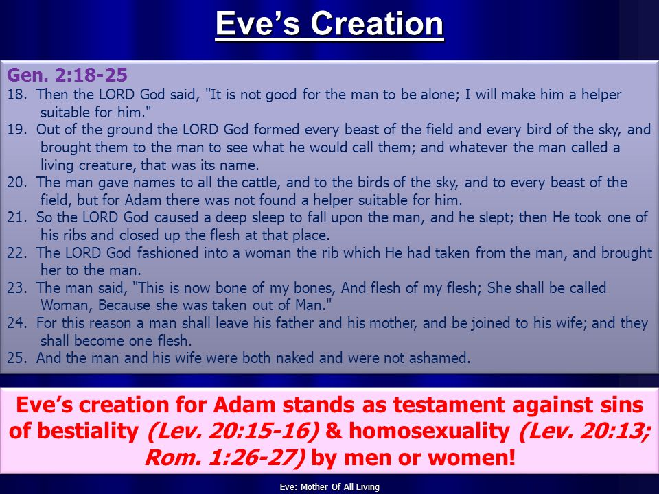 Eve: Mother Of All Living Eve's Creation Gen. 2:18-25 18.