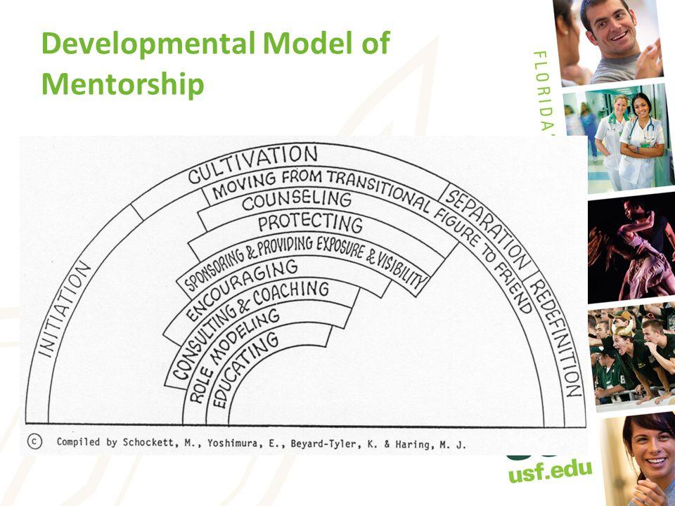 Developmental Model of Mentorship
