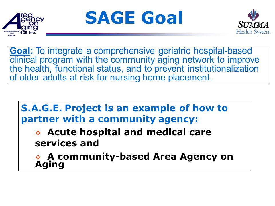 SAGE Goal S.A.G.E.