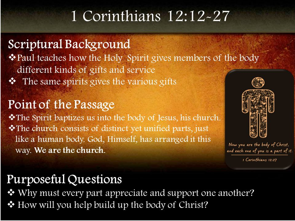 1 Corinthians 12:12-27 Scriptural Background  Paul teaches how the Holy Spirit gives members of the body different kinds of gifts and service  The same spirits gives the various gifts Point of the Passage  The Spirit baptizes us into the body of Jesus, his church.