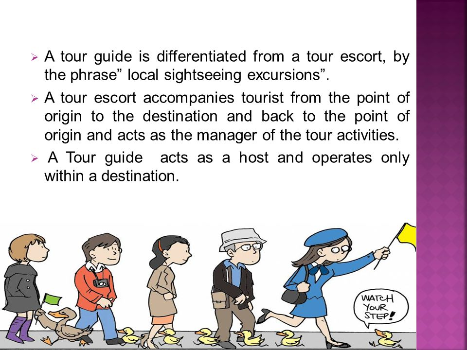  A tour guide is differentiated from a tour escort, by the phrase local sightseeing excursions .