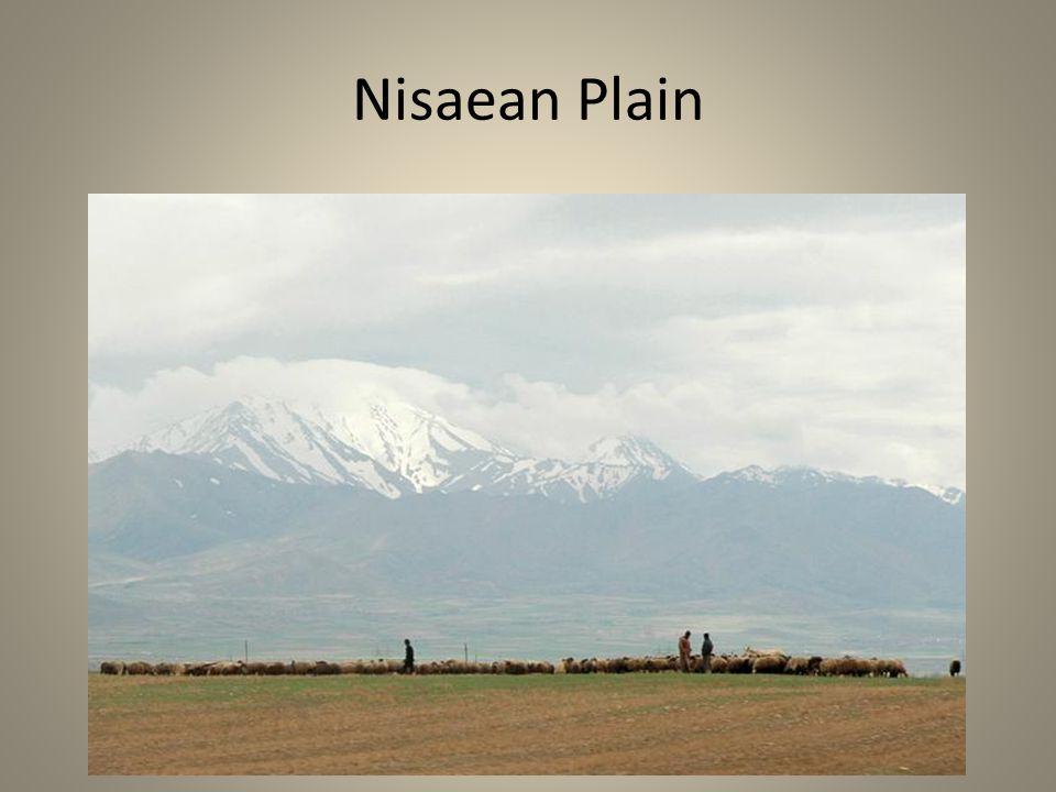 Nisaean Plain