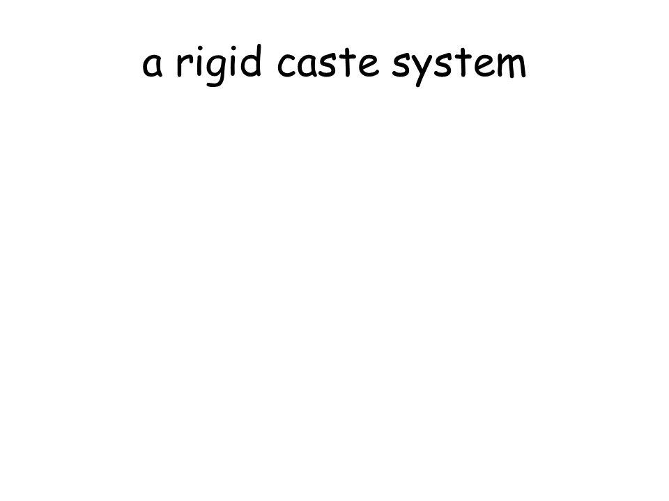 a rigid caste system