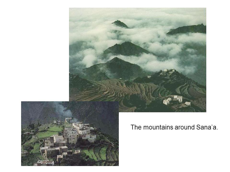 The mountains around Sana'a.