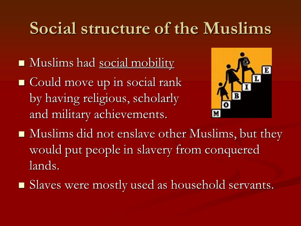 Social structure of the Muslims Muslims had social mobility Muslims had social mobility Could move up in social rank by having religious, scholarly an