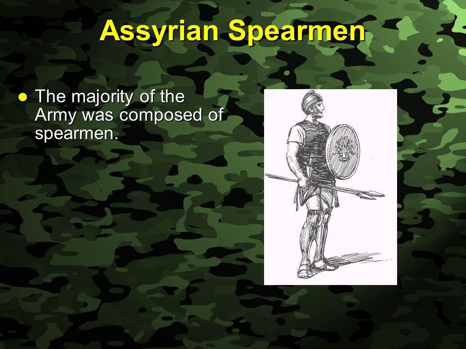 Slide 12 Assyrian Spearmen The majority of the Army was composed of spearmen.
