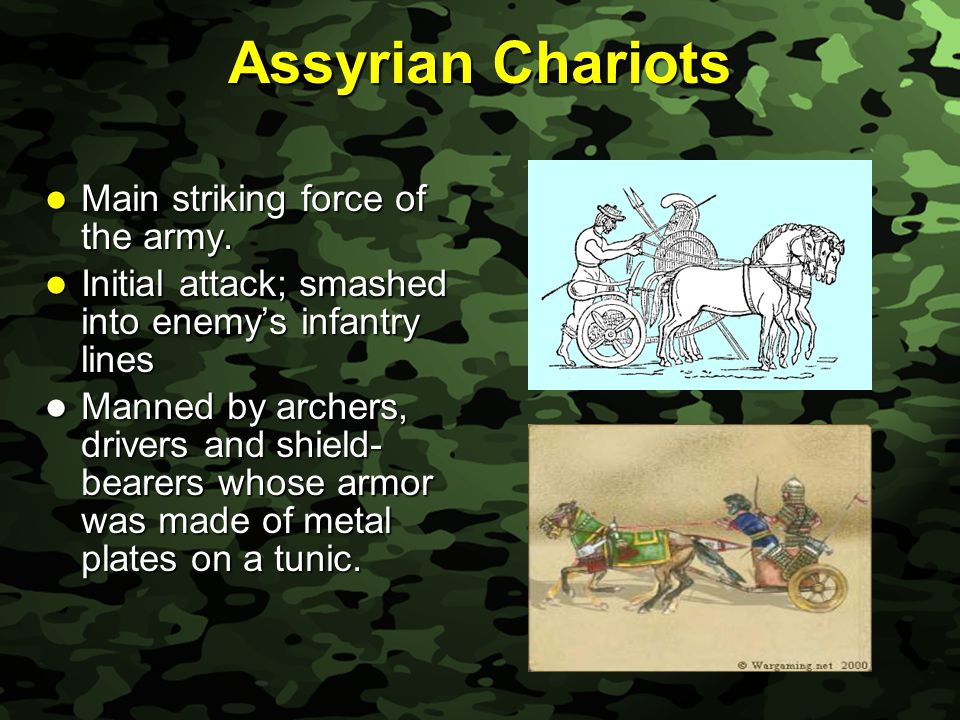 Slide 14 Assyrian Chariots Main striking force of the army.