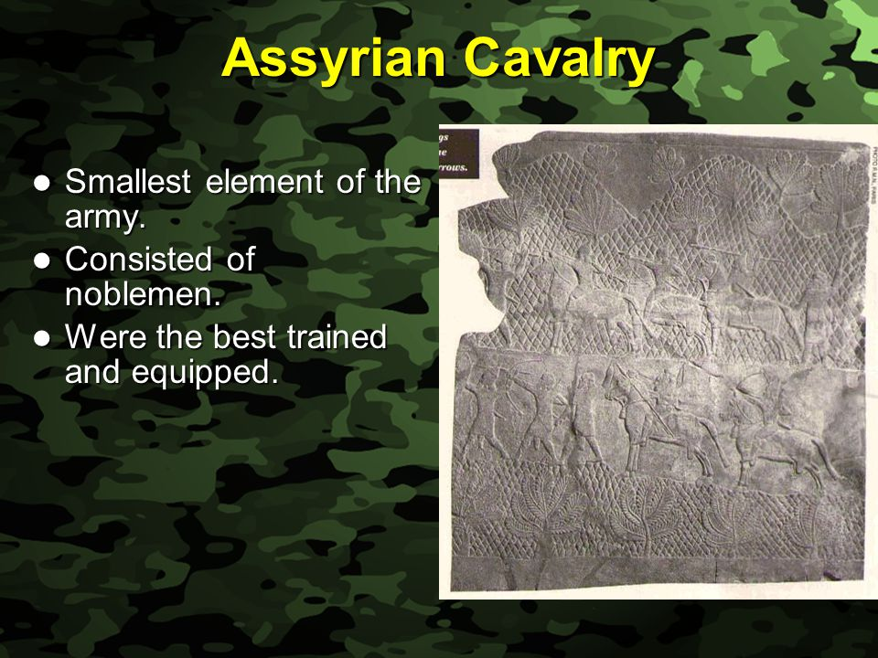Slide 15 Assyrian Cavalry Smallest element of the army.
