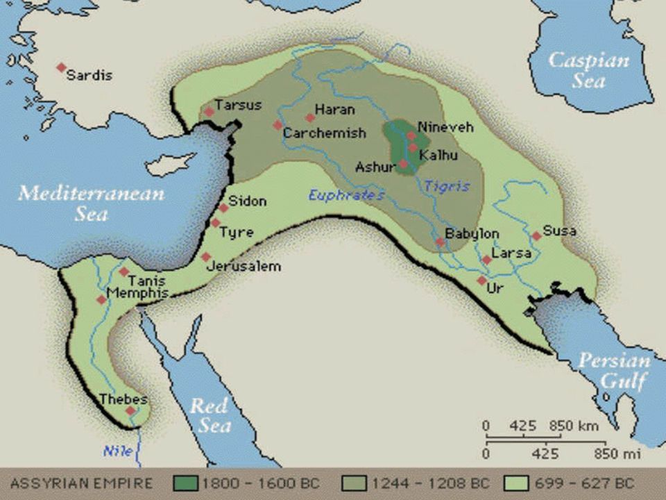 Slide 10 Assyrian Army Was the first truly military society in history.