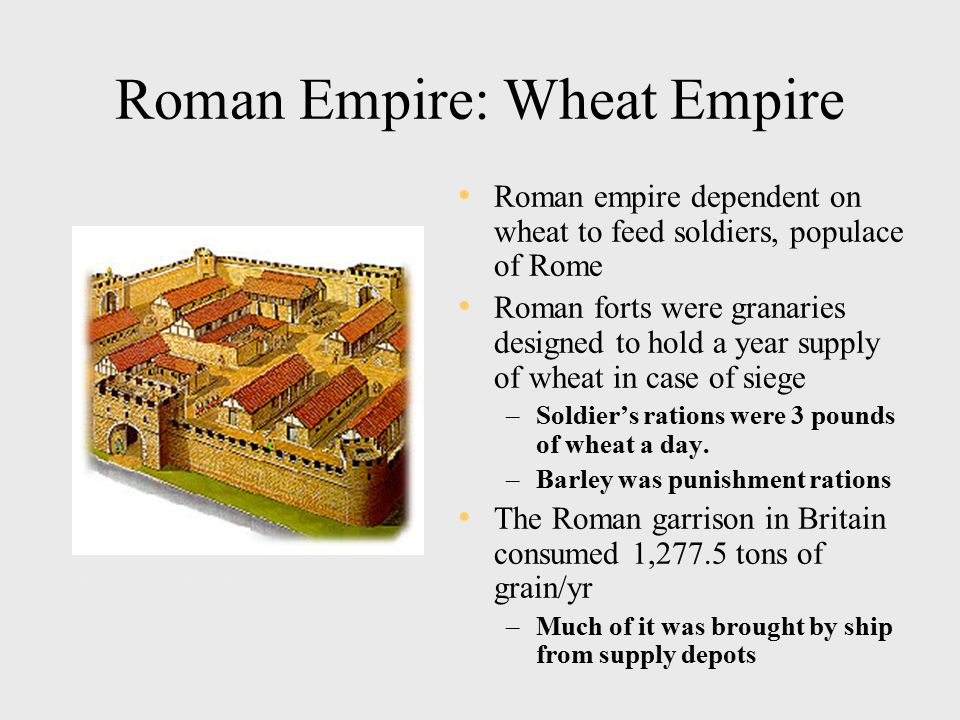 Roman Empire: Wheat Empire Roman empire dependent on wheat to feed soldiers, populace of Rome Roman forts were granaries designed to hold a year supply of wheat in case of siege –Soldier's rations were 3 pounds of wheat a day.