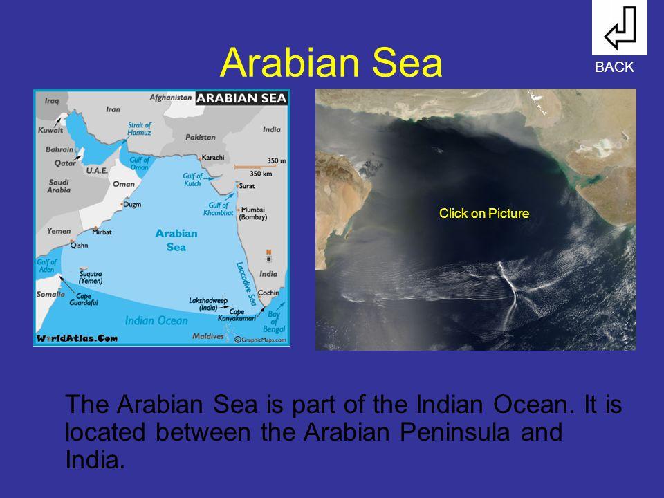 Arabian Sea The Arabian Sea is part of the Indian Ocean.