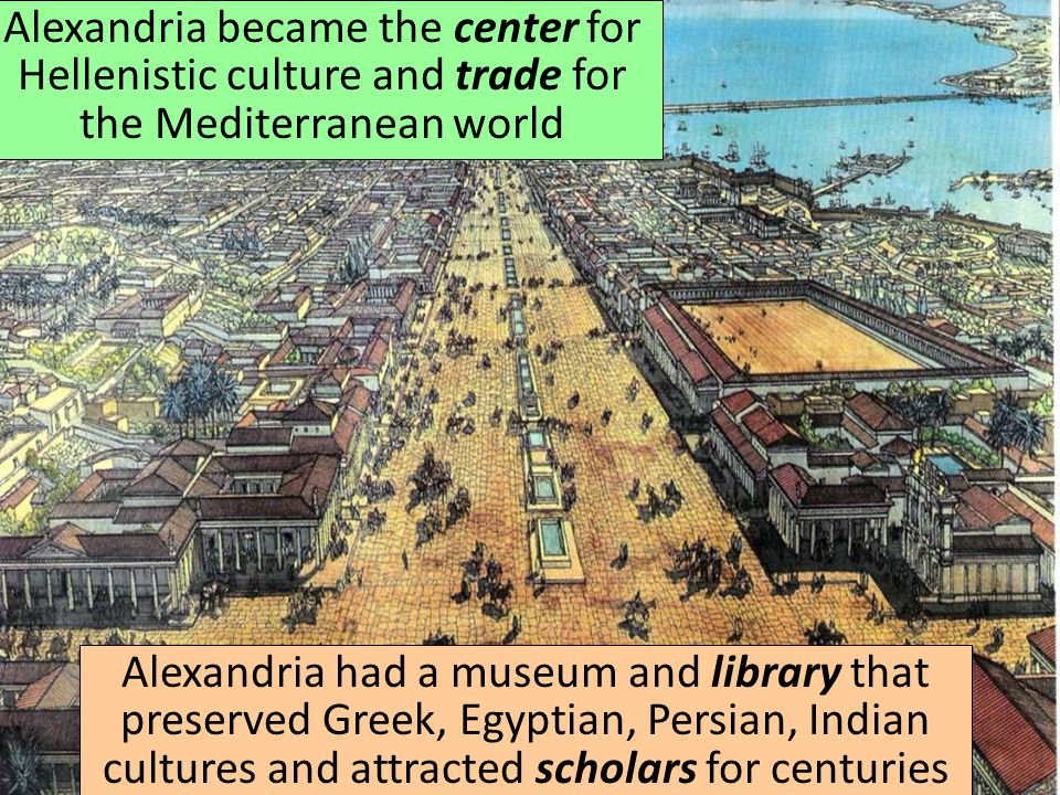 Alexandria became the center for Hellenistic culture and trade for the Mediterranean world Alexandria had a museum and library that preserved Greek, Egyptian, Persian, Indian cultures and attracted scholars for centuries