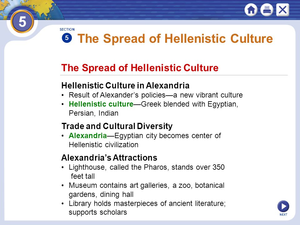 NEXT The Spread of Hellenistic Culture Hellenistic Culture in Alexandria Result of Alexander's policies—a new vibrant culture Hellenistic culture—Gree