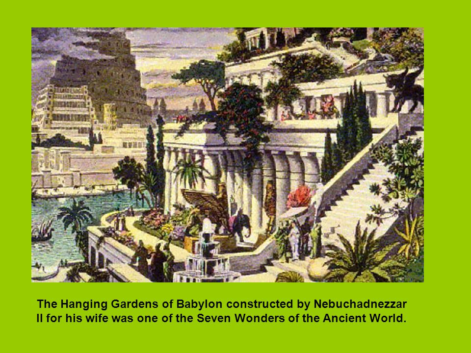 The Hanging Gardens of Babylon constructed by Nebuchadnezzar II for his wife was one of the Seven Wonders of the Ancient World.