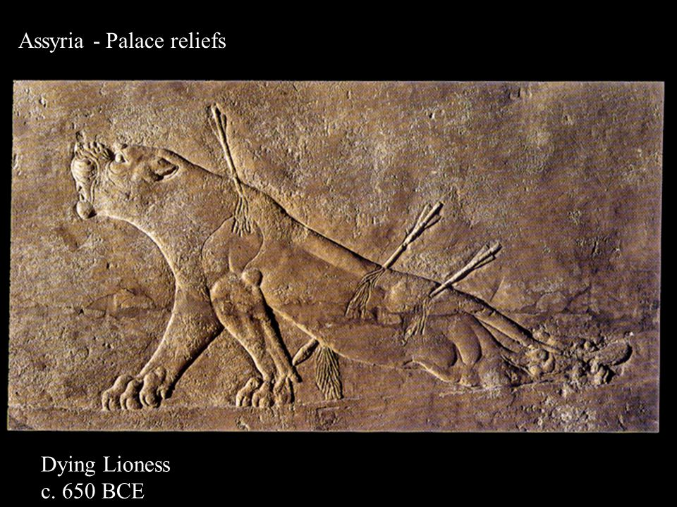 Assyria - Palace reliefs Dying Lioness c. 650 BCE
