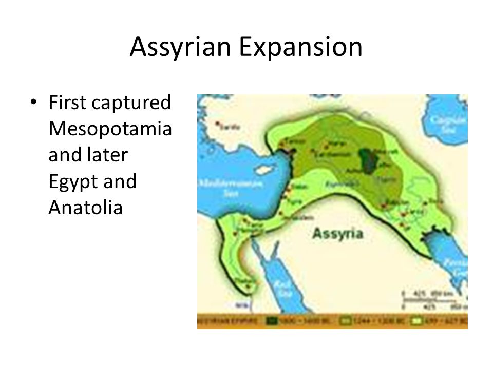Assyrian Expansion First captured Mesopotamia and later Egypt and Anatolia