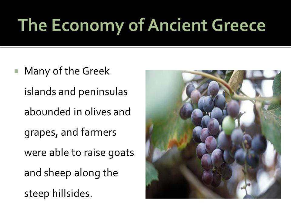  Many of the Greek islands and peninsulas abounded in olives and grapes, and farmers were able to raise goats and sheep along the steep hillsides.
