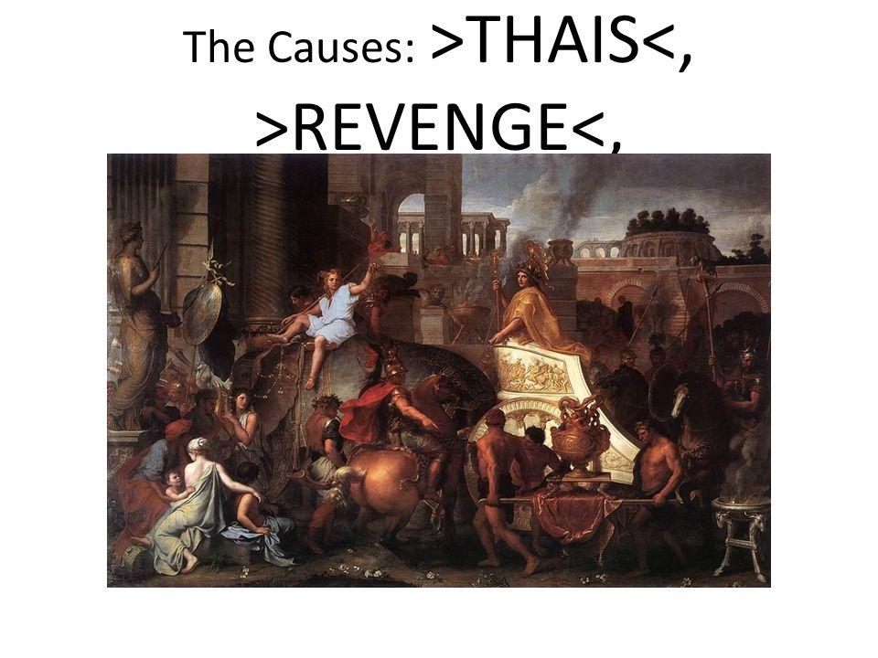 The Causes: >THAIS REVENGE<,