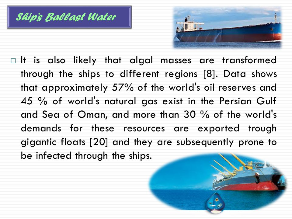  It is also likely that algal masses are transformed through the ships to different regions [8]. Data shows that approximately 57% of the world's oil